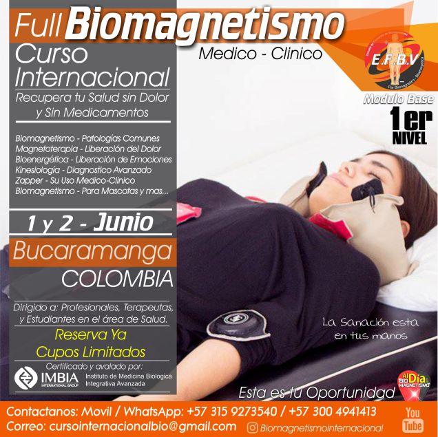 Biomagnetismo-isacc-goiz-par-biomagnetico-terapias-imanes-cursos-bucaramanga-colombia